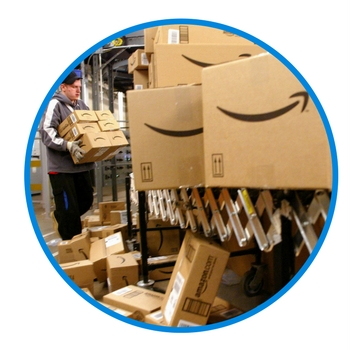 amazon-delivery-avoiding-birds-and-buildings