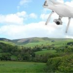 drones can save forests feature